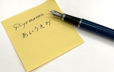 サライ1月号付録万年筆の書き味