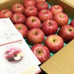 天童市のりんご